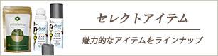 エレメンタリスト・セレクトアイテム